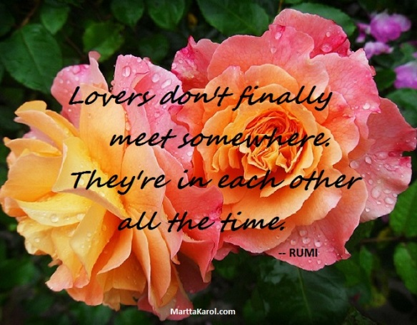 Rumi quote Lovers don't finally meet somewhere. They're in each other all the time. over two pink and yellow roses.