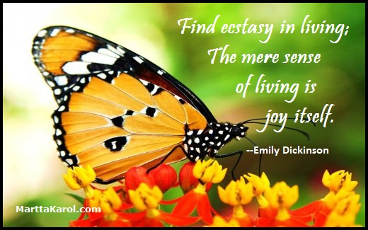 quote-emily-dickinson-find-ecstasty-in-living-image-african-monarch-butterfly-per-free-picture.net