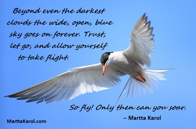 Martta-Karol-quote-on-flying-white-gull-blue-sky