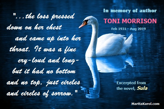 quote-toni-morrison-in-memory-of-Sula-bird-swan-on-blue-water-per-pixabay